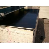 Wholesale 2440 x 1220 mm Concrete Shuttering Plywood Laminated Waterproof from china suppliers