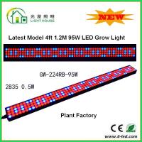 Wholesale 1200mm Hydroponic Led Grow Light 1200mm For Greenhouse , Energy Saving from china suppliers