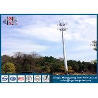 Wholesale Telecommunication Monopole Towers Outter Climbing Rung Two Platforms from china suppliers