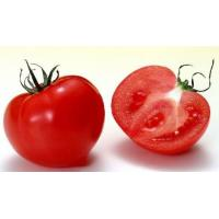 Buy cheap Tomato Extract, Lycopene,1%,5%,10% HPLC,  CAS No.: 502-65-8, natural pigment, natural antioxidant, Shaanxi Yongyuan from wholesalers
