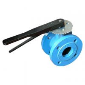Blue Worm type PTFE cast iron butterfly valve