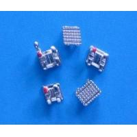 Wholesale Straight Orthodontic from china suppliers
