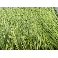 Wholesale UV - Anti Football Artificial Grass 9500 Dtex CE / SGS / ISA from china suppliers
