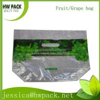 Wholesale green grape havest packaging zipper bag from china suppliers