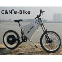 Wholesale Adult Mid Drive Motor Electric Off Road Bike With 30Ah Lithium Ion Battery from china suppliers