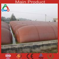 Wholesale 10m3 Medium Size Anaerobic Digester China Biogas Plant from china suppliers