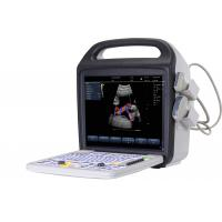 Wholesale 15'' LCD Screen Portable color Doppler ultrasound with stable image performance from china suppliers