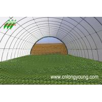 Wholesale pipe,  plastic film,  insect net,  shade net,  hot house covering,  conservatory,  forcing house,  plastic greenhouse from china suppliers