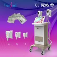 Wholesale High efficient no pains no risks cryolipolysis fat freezing slimming machine handle changeable 6 EVM control from china suppliers