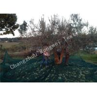 Wholesale Green Knitted 100% Virgin HDPE Agriculture Olive Collection Net With UV Resistant from china suppliers