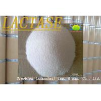 Quality Enzyme Lactase Powder 100,000u/g Enzyme Feed Additive Szym-LAC100FO for sale