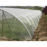 Wholesale Anti-Insect Window Screens for growing and agriculture using,greenhouse using from china suppliers