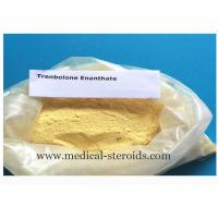 Wholesale Muscle Growth Steroid Hormone Powder Parabolan 10161-33-8 Trenbolone Enanthate from china suppliers