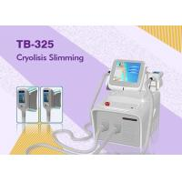 Wholesale Cryolipolysis Fat Freeze Slimming Machine for Weight Loss with two Handle Cellulite Removal from china suppliers