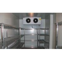 Wholesale Customized Container Cold Room PLC Control For Fish / Chicken / Meat from china suppliers