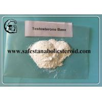 Wholesale Muscle Building Anabolic Steroids Testosterone Base White Powder for Gaining Muscle CAS 58-22-0 from china suppliers
