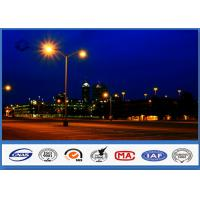Wholesale Double Arms Octagonal Road Parking Lot Light Poles customized color from china suppliers