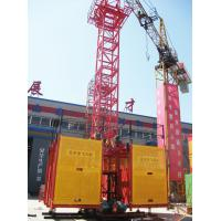 Wholesale SS100/100 Adjustable 2 Ton Twin Cage Auto Construction Building Material Hoist Equipment from china suppliers