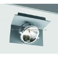 Wholesale Qr-Lp111 Ceiling Light / LED Ceiling Lamp / Ceiling Lighting (C4A0013) : from china suppliers