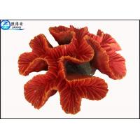 Wholesale Fake Coral Natural Aquarium Decorations Fish Tank Background with Silicone and Polyresin from china suppliers