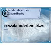 Buy cheap Quality Guaranteed 99% Testosterone Enanthate Anabolic Steroids for Muscle Building and Bulking Cycle from wholesalers