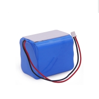 Wholesale Rechargeable CC CV 5000mAh 12 Volt Battery Pack Pollution Free from china suppliers