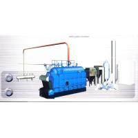 Wholesale DZL Series Rated evaporation capacity 1.4MW 0.7MPa Biomass-Fuel Hot Water Boiler from china suppliers