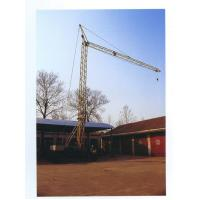 Wholesale Qtk20 Quick Installation Tower Crane max load 2t--mingwei@crane2.com from china suppliers