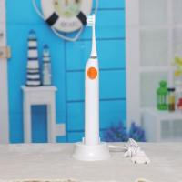 Wholesale Sonic Waterproof Rechargeable Electric Toothbrush from china suppliers