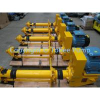 Wholesale vertical slurry sewage pump from china suppliers