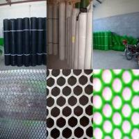 Wholesale Agricultural Plastic Chicken Mesh( HDPP,PE ISO 9001) from china suppliers