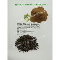 Wholesale Chinese herbal extract manufacture, natural herb beverage ingredients, Oriental Raisin Tree Extract,  for drunkenness from china suppliers