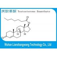 Quality Testosterone Anabolic Steroid Testosterone Enanthate White Powder 99.5% Purity CAS 315-37-7 for Bodybuilding​ for sale