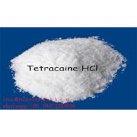 Buy cheap Tetracaine Hcl Pharmaceutical Raw Materials For Epidural Anesthesia , 99% pure from wholesalers