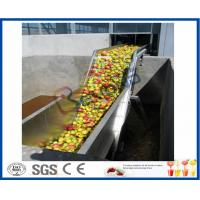 Wholesale Fruit Juice Processing Machines , Apple Processing Machine For Juice Making from china suppliers