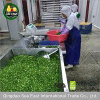 100% Natural fd vegetable freeze dried green onion for fast food