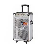Wholesale 100 Watt Professional PA Portable Trolley Speaker Bluetooth Active Speakers from china suppliers
