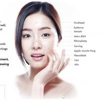 Wholesale Facial anti Wrinkles Folds Pure Hyaluronic Acid Skin Care Cross Linked Super Deep Lines nose Augmentation filler from china suppliers