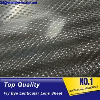 Wholesale 3d lenticular printing fly-eye lenticular sheet lenticular lens arrays fly eye lenticular from china suppliers