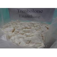 Wholesale Primobolan Depot Trenbolone Enanthate Tambolons Injecting Anabolic Steroids from china suppliers