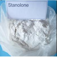 Wholesale Pharmaceutical Raw Muscle Growth Steroids Stanolone For Muscle Gaining Androlone 521-18-6 Powder from china suppliers
