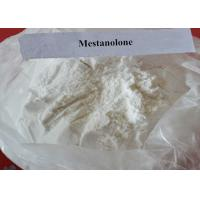 Wholesale Raw Steroid Powder Mesterolone CAS 1424-00-6 Proviron for Bodybuilding from china suppliers