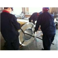 Wholesale Painted Steel Strip or Coil from china suppliers