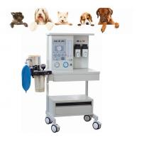 Wholesale CE Marked Portable Anesthesia Machine/Medical Equiment for Vet Use  Anesthesia Machine from china suppliers