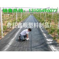 Buy cheap 2016 high quality weed barrier/weed mat polypropylene woven geotextile from wholesalers
