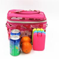 Wholesale Mini Fit And Fresh Ice Packs Slim Lunch Ice Packs For Kids Portable Bag from china suppliers