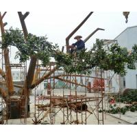 Quality 10m huge outdoor park/resturant landsaping artificial banyan tree for sale