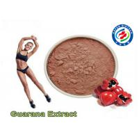 Wholesale Natural Plant Guarana Extract Powder , CAS 58-08-2 Guarana Extract Weight Loss from china suppliers