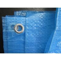Wholesale 2*3 m pe Tarpaulin 55g/sqm includes Eyelets from china suppliers