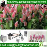 Wholesale Flower packaging net Extruder(FCEPEW-75) from china suppliers